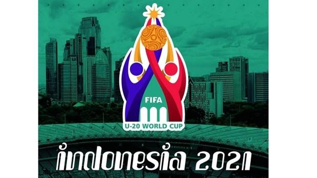 L'Asie du Sud-Est accueillera la Coupe du monde U20 de la FIFA hinh anh 1