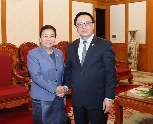 Vietnam-Laos : cooperation entre les deux Partis dans le secteur des relations exterieures hinh anh 1