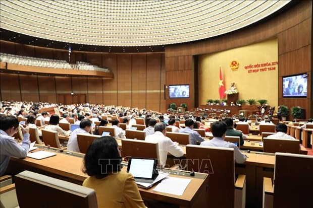 L'Assemblee nationale poursuit sa 8e session hinh anh 1