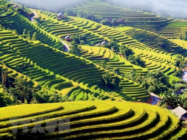 La region du Viet Bac valorise sa marque et son patrimoine hinh anh 1