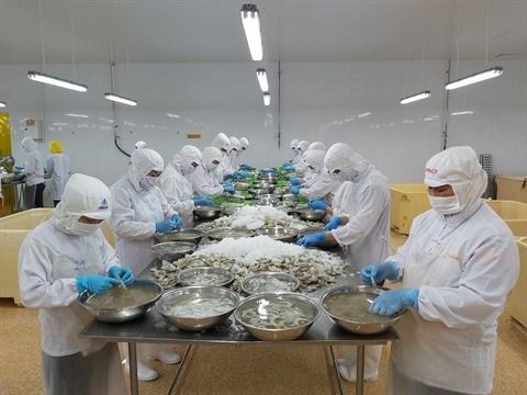 Le Vietnam et la France se penchent sur les avantages de l'EVFTA hinh anh 2