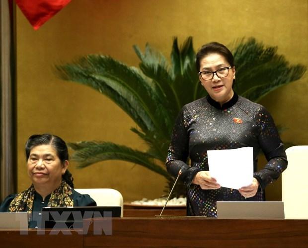 La presidente de l'AN demande au gouvernement d'appliquer efficacement les resolutions de l'AN hinh anh 1