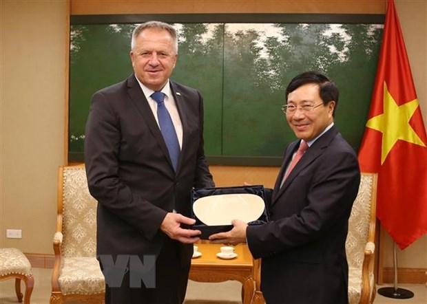 Le vice-PM Pham Binh Minh recoit le ministre slovene de l'Economie hinh anh 1