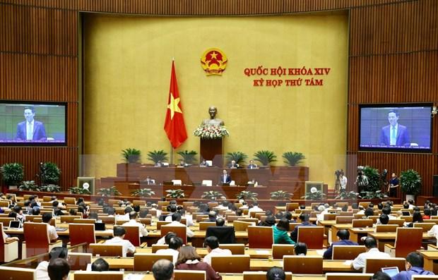 L'Assemblee nationale poursuit sa 8e session hinh anh 1