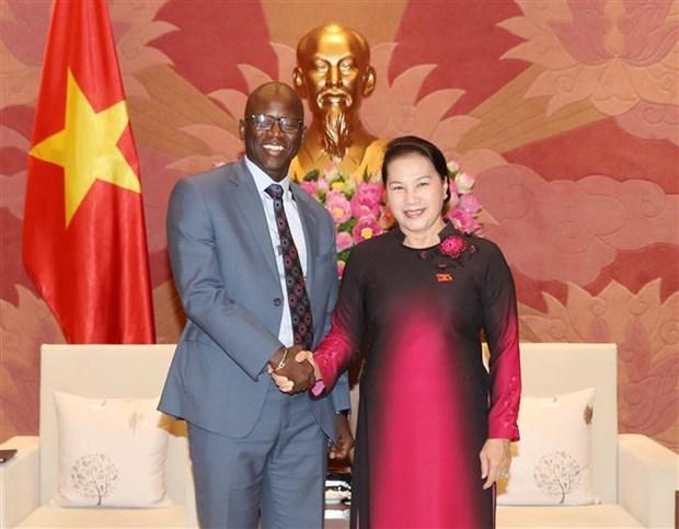 La presidente de l'Assemblee nationale recoit le directeur national de la BM hinh anh 1