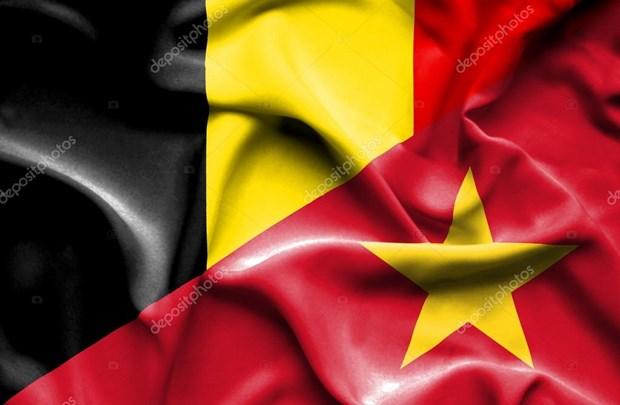 La Belgique, partenaire important du Vietnam en Europe hinh anh 1