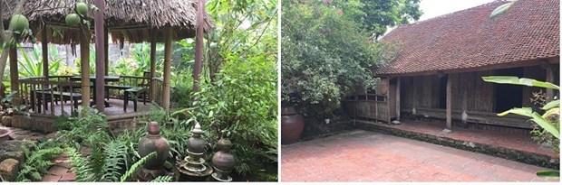 Les villageois de Duong Lam, de l'amour pour la terre natale a l'espoir de la conserver hinh anh 3