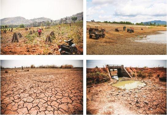 Le rechauffement climatique menace l'agriculture du Tay Nguyen hinh anh 2