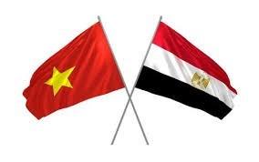 Le Vietnam et l'Egypte promeuvent le commerce et la connectivite des investissements hinh anh 1