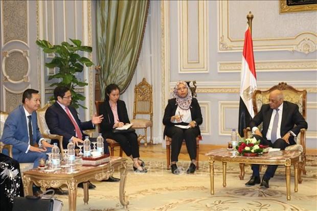 Le Secretaire du Comite central du Parti en visite en Egypte hinh anh 1