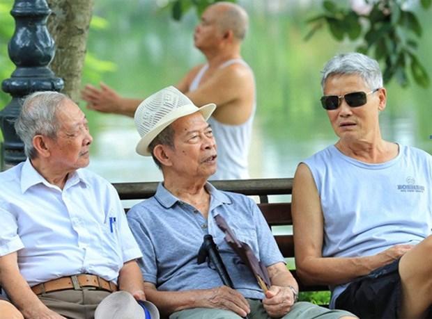 Vieillissement de la population: quelle solution pour le Vietnam? hinh anh 1