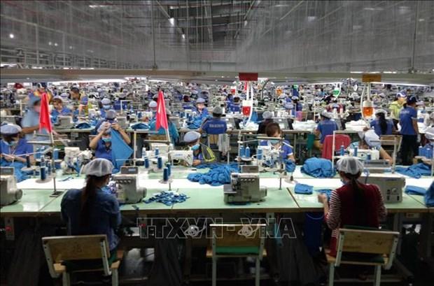 Les entreprises misent sur l'EVFTA pour doper leurs exportations hinh anh 1