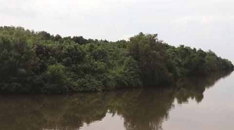 Le delta du Mekong pourrait disparaitre sous les eaux en 2100 hinh anh 2