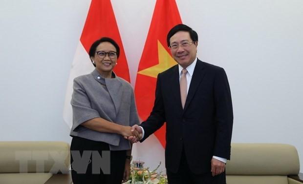 Le Vietnam et l'Indonesie renforcent leur cooperation multiforme hinh anh 1