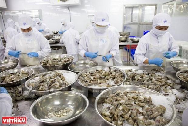 Les centres d'exportation de crevettes du Vietnam s'affirment hinh anh 3