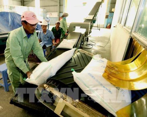 Labeliser le riz vietnamien hinh anh 1