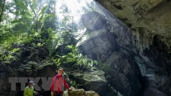 La grotte de Son Doong apparait dans le nouveau clip video d'Alan Walker hinh anh 1