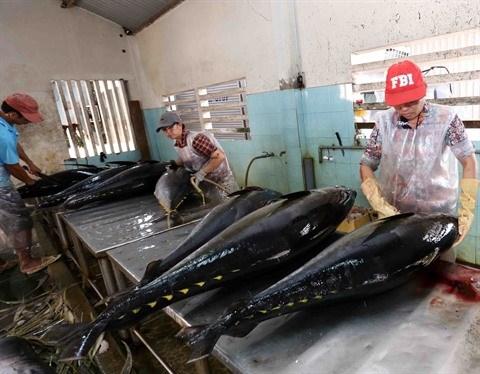 Rebond des exportations de thon en novembre hinh anh 1