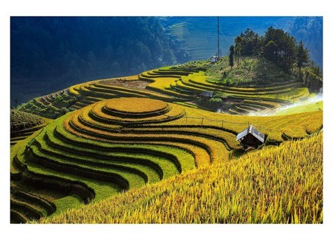 Les rizieres en terrasse a Mu Cang Chai reconnues Patrimoine national special hinh anh 1