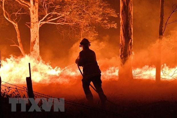 Message de sympathies a l'Australie pour les incendies de foret hinh anh 1