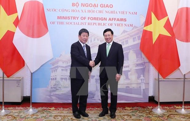 Entretien entre les ministres vietnamien et japonais des AE hinh anh 1