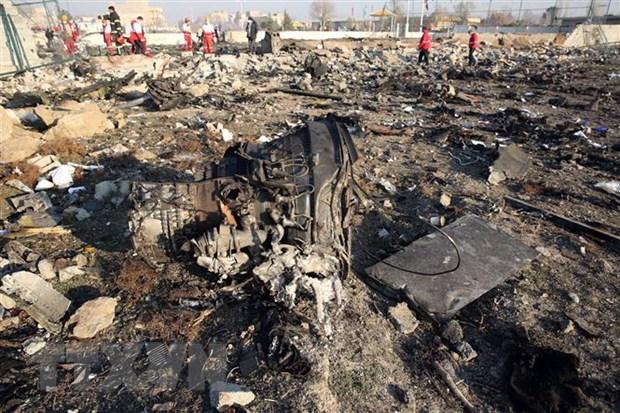 Accident d'avion d'Ukraine Airlines : le Vietnam exprime ses condoleances hinh anh 1