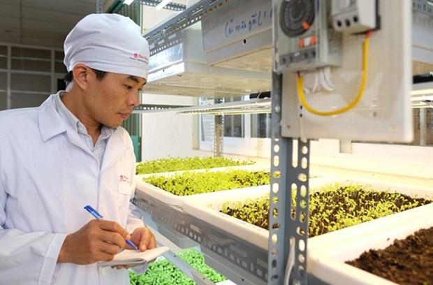 Innovation: le projet FIRST jette les bases de l'avenir hinh anh 1
