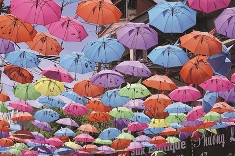 Les parapluies de Van Phuc font tourner les tetes hinh anh 1