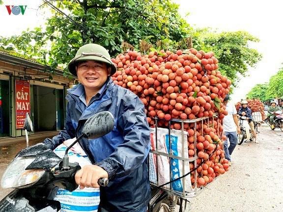Les fruits vietnamiens continuent de conquerir des marches difficiles hinh anh 1