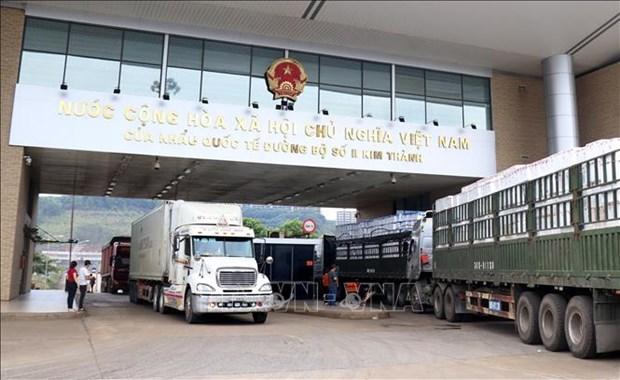 Le nouveau coronavirus freine les exportations vietnamiennes hinh anh 1