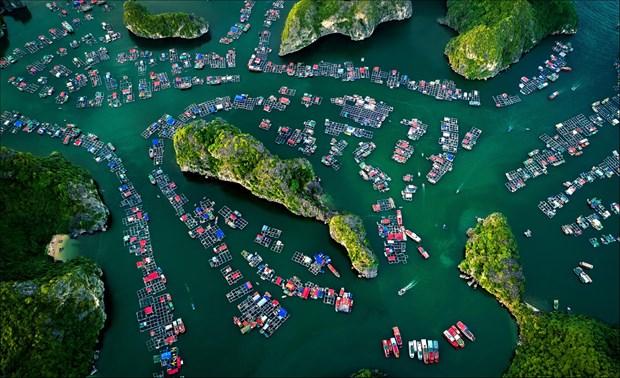 Le Vietnam parmi les premieres destinations tendance en 2020 hinh anh 1