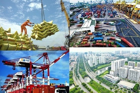 La croissance de 2020 sera portee par les secteurs traditionnels hinh anh 1