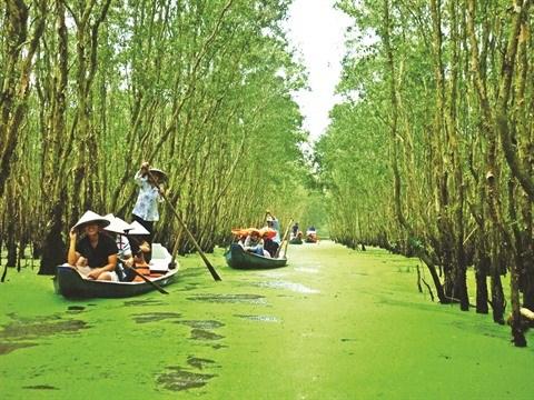 Tra Su : bienvenue dans le paradis vert ! hinh anh 1