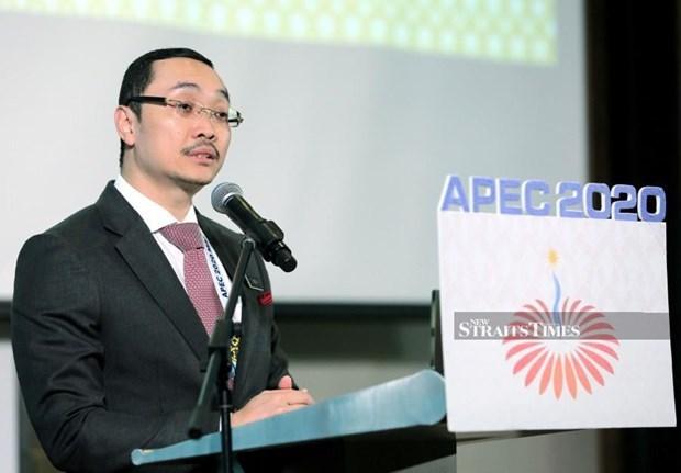 La Vision de l'APEC apres 2020 devrait garantir les objectifs de Bogor hinh anh 1