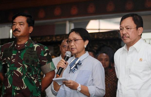 Diamond Princess: Trois Indonesiens contamines par le nouveau coronavirus hinh anh 1