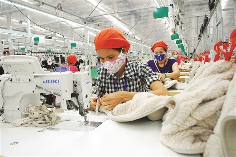 EVFTA : opportunites et defis pour les entreprises nationales hinh anh 1