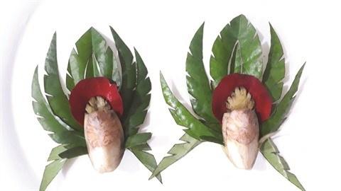 L'origine de la chique de betel hinh anh 2