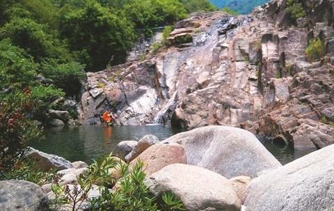 Suoi Mo, un fantastique ruisseau de la cordillere de Truong Son hinh anh 1