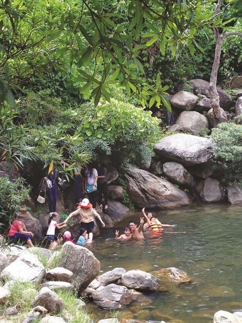 Suoi Mo, un fantastique ruisseau de la cordillere de Truong Son hinh anh 2
