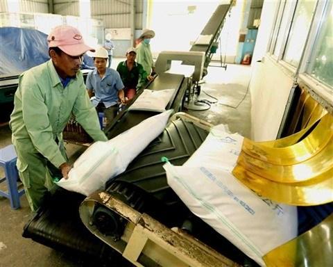 Les exportations de riz vietnamien vers le Senegal sont en hausse hinh anh 1