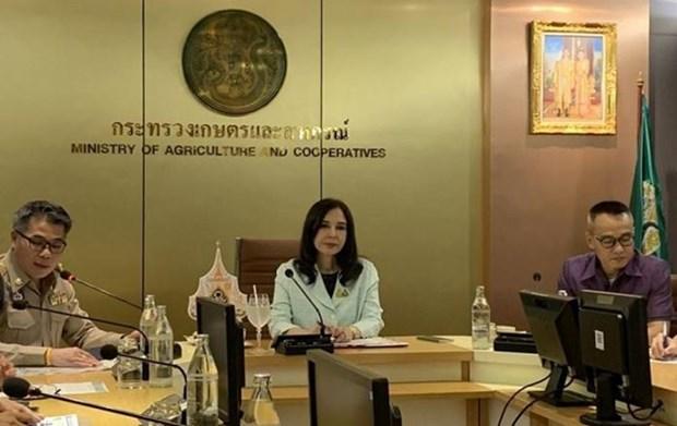 Thailande: les exportations de fruits vers la Chine plombees par le COVID-19 hinh anh 1