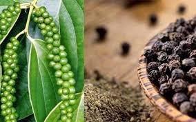 Chute des exportations nationales de poivre vers la Chine hinh anh 1