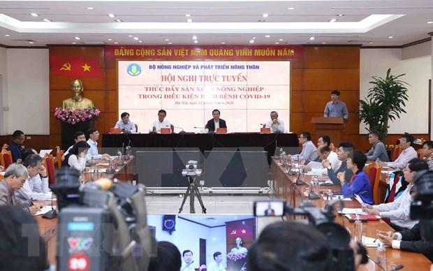 Promotion de la production agricole pour repondre a la consommation domestique et aux exportations hinh anh 1