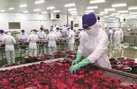 Le secteur agricole, l'un des grands gagnants de l'EVFTA hinh anh 1