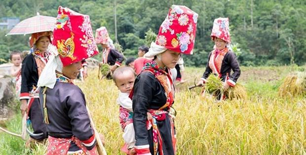 L'egalite des sexes au coeur du programme de developpement durable des regions ethniques hinh anh 1
