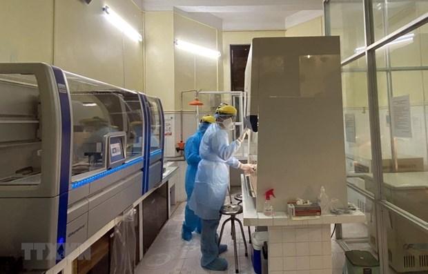 COVID-19 : le bilan des contaminations passe a 113 hinh anh 1