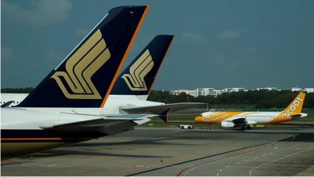 Singapore Airlines immobilise la majorite de sa flotte hinh anh 1