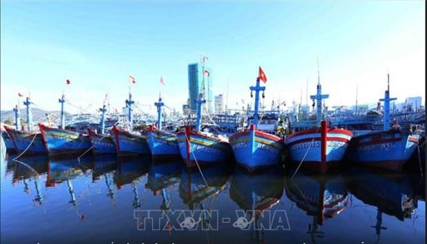 Binh Dinh et Ninh Thuan s'emploient a lutter contre la peche INN hinh anh 1