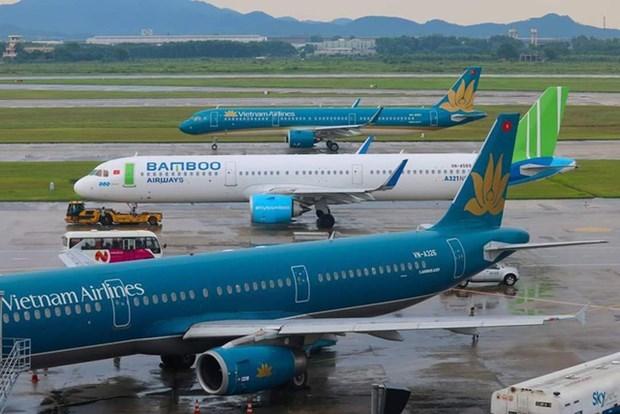 Les compagnies aeriennes suspendront le trafic de passagers au Vietnam hinh anh 1