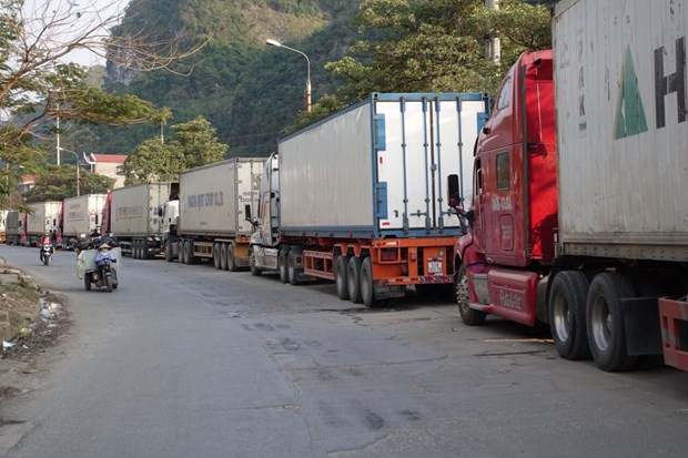 Les exportations vietnamiennes vers la Chine piegees par le coronavirus hinh anh 1